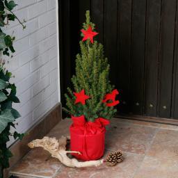 Geschmückte Zuckerhutfichte in weihnachtlicher Husse, klein