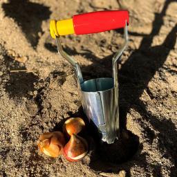 Zwiebelpflanzer Automatik