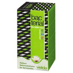 Velda Bacterial, 50 ml