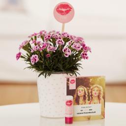 "Nelke Pink Kisses® Friendset 4 ""Freundschafts-Knutscher"" - mit exklusivem Lippenpflegestift"