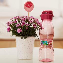 """Nelke Pink Kisses® Friendset 5  """"Care-Paket"""" mit stylischer Trinkflasche von Culinaro"""