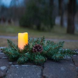 LED-Tannengesteck Serene, 33x33x12 cm, Kunststoff, grün