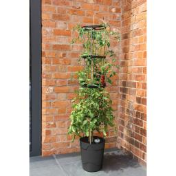 Tomaten-Pflanzturm Grow Tower, Durchmesser 28 cm, H 32 cm, Stütze 120 cm, anthrazit