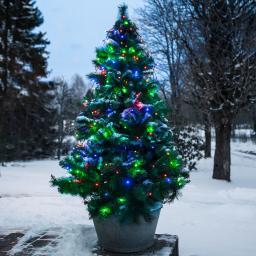 Star LED-Baumvorhang Christmas Joy, 200 cm, Kunststoff, bunt