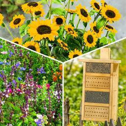 Bienen All Inclusive