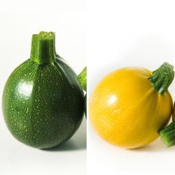 Gärtner Pötschkes Trendiges Zucchini-Duo