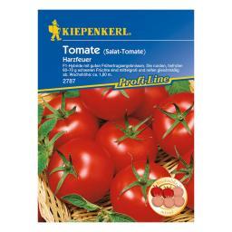 Tomatensamen Harzfeuer F1