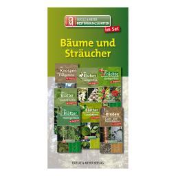 Bestimmungskarten-Set Bäume und Sträucher