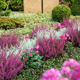 Set Grabbepflanzung, Herbst-Klassik, Einzel