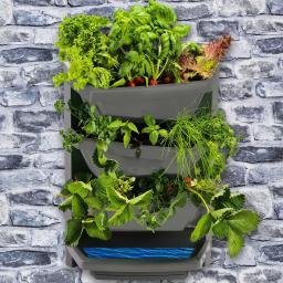 Vertical Garden Grundelement, titan