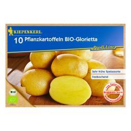 BIO Kartoffel Glorietta, 10 Stück