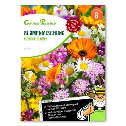 Niedrige Blumenmischung einjährig
