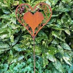 Gartenstecker Herzblatt , Edelrost, 60 cm