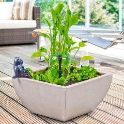 Wassergarten, Miniteich-Komplett-Set mit Pumpe, creme-weiss
