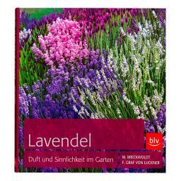 Lavendel: Duft und Sinnlichkeit im Garten