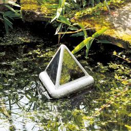 Reflektierende Pyramide, Reiherschreck