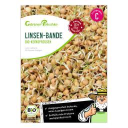 BIO Keimsprossen Linsen-Bande, 40 g