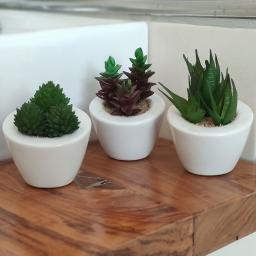 Kunstpflanze Sukkulentensortiment, 3er-Set