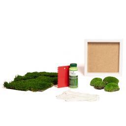 DIY Moosbild, Quadrat, inklusive weißem Holzrahmen, 25 x25 cm