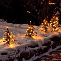 Weihnachtstannen Lichterglanz, 6er-Set