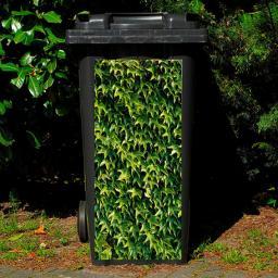 Mülltonnen-Aufkleber Efeu