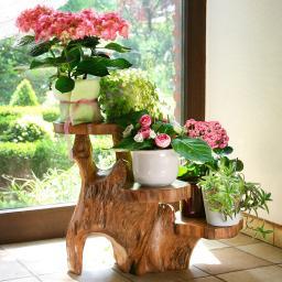 TEAK-Blumentreppe Natur Pur, braun