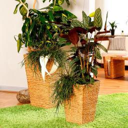 Pflanzsäulen Nature-Style, eckig, 2er-Set