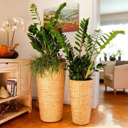 Pflanzsäulen Nature-Style, rund, 2er-Set