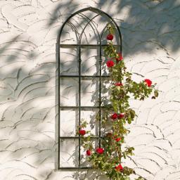 Rankgitter Rosenfenster