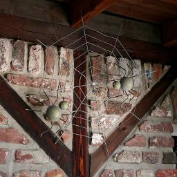 Wanddeko Spinnennetz