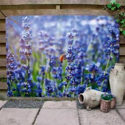Gartenposter Lavendel 90x130cm