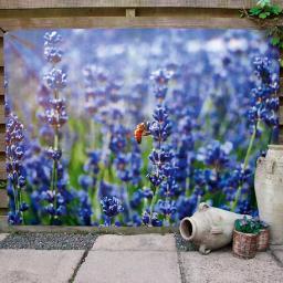 Gartenposter Lavendel 150x210cm
