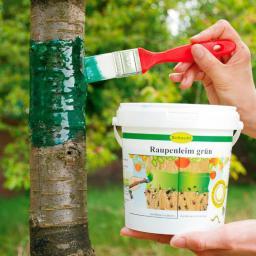Schacht Raupenleim grün, 250 g