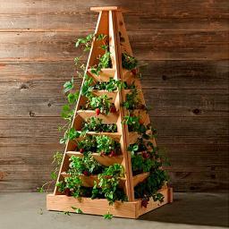 Pflanz-Pyramide, Akazienholz, 56x56x120 cm