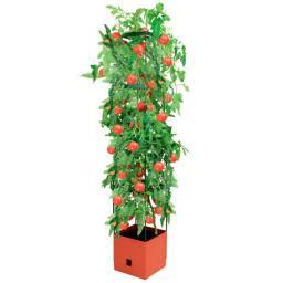 Tomaten-Tower, mit eckiger Rankhilfe, 25x25x125 cm