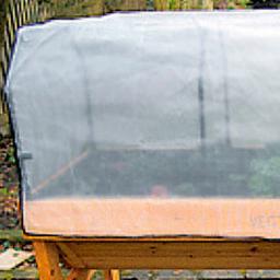 VegTrug Wachstumsvlies für VegTrug groß, 180x7x65 cm
