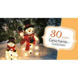 Weihnachts-Gutschein 30,- Euro