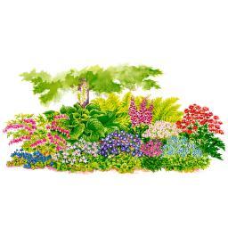 Sortiment Blütenpracht im Schatten, 20 Stück