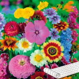 Blumen-Saatteppich 0,20 x 3 m, Bauerngarten