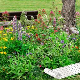 Blumen-Saatteppich 0,20 x 3 m Passepartout-Mix