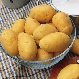 Kartoffel Linda, 2,5 kg