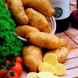 Kartoffel Annabelle, 5 Stück