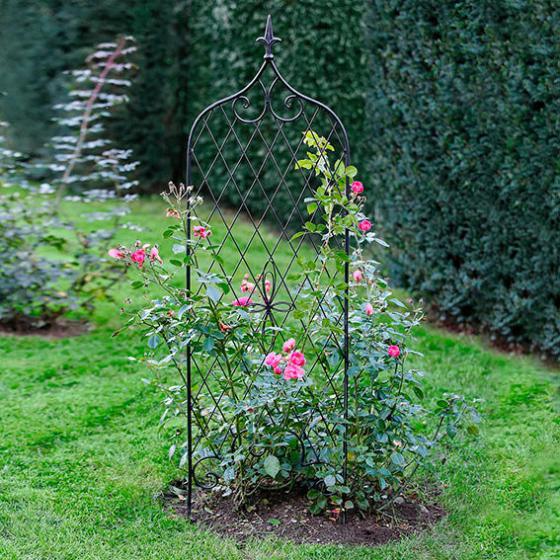 Gartenspalier und Rankhilfe Highgate