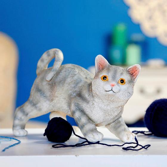 Katzenbaby Lucy