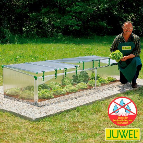 JUWEL Biostar 1500, transparent, m. Fensterautomat, 150x80x50/40 cm