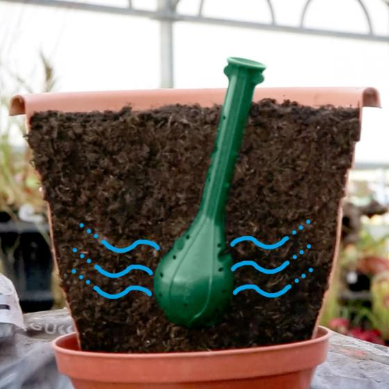 Plantwell Bewässerungshilfe, 2er-Set