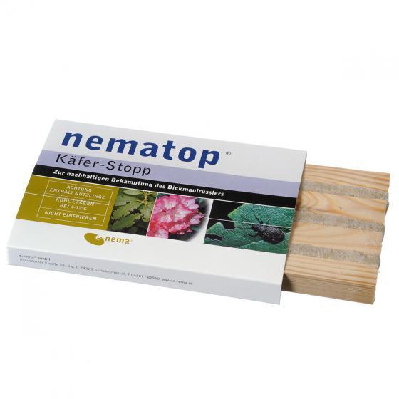e-nema nematop Käfer-Stopp Nematoden gegen Dickmaulrüssler, 2,5 Mio.