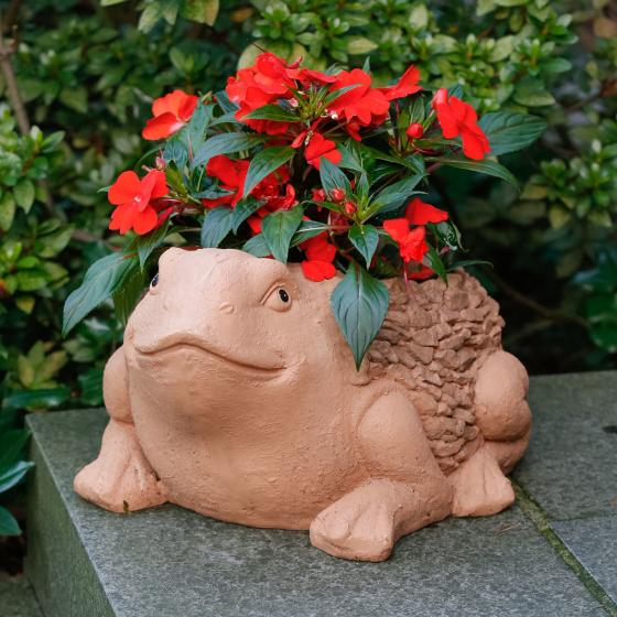 Pflanztopf Frosch Bully