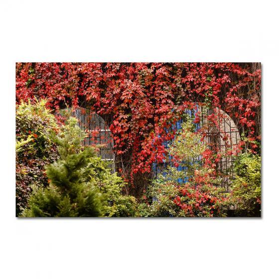 Garten-Poster Herbstlaub