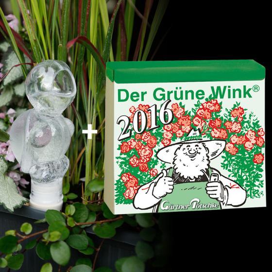 Bewässerungs-Schildkröte Paula Panza & Kalender der Grüne Wink 2016
